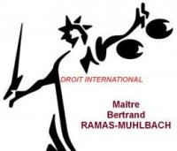 logo-ramas-muhlbach-droit-international