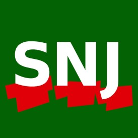 LogoSNJ-Site.jpeg