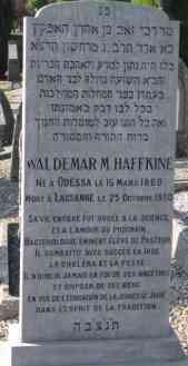 Tombe Waldemar Haffkine.jpg