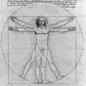 Léonard Vinci.jpg