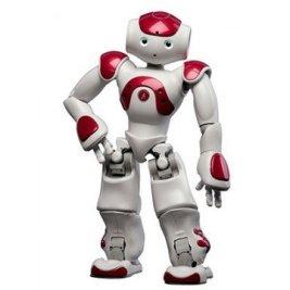 robot-humanoide.jpg