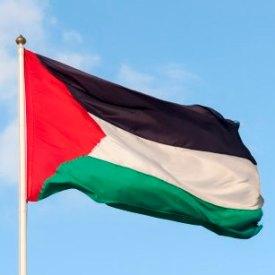 Palestine drapeau.jpg